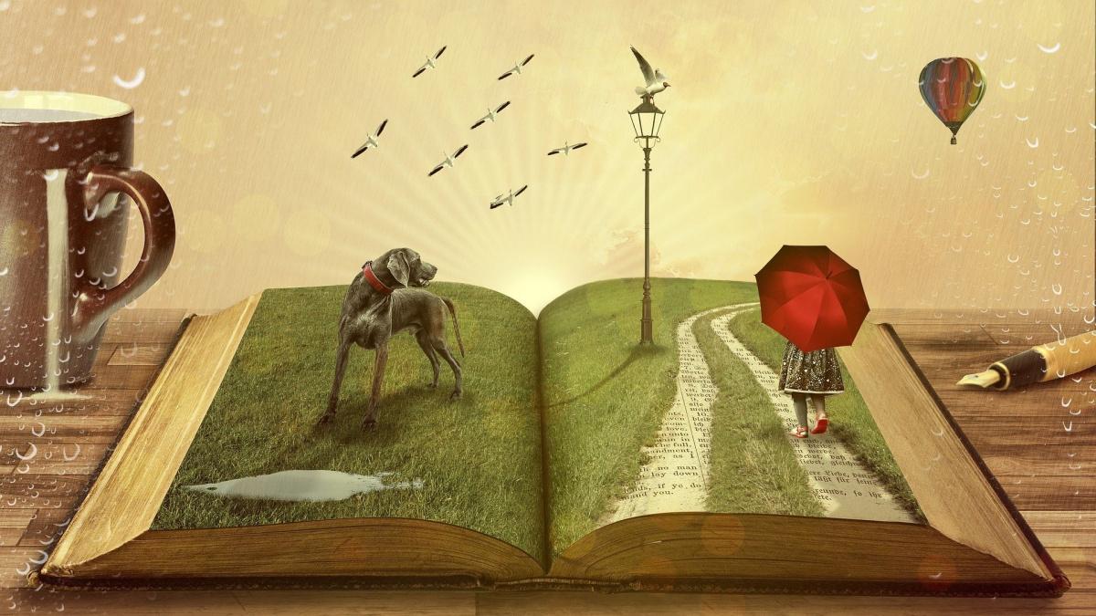 литературный художественный перевод