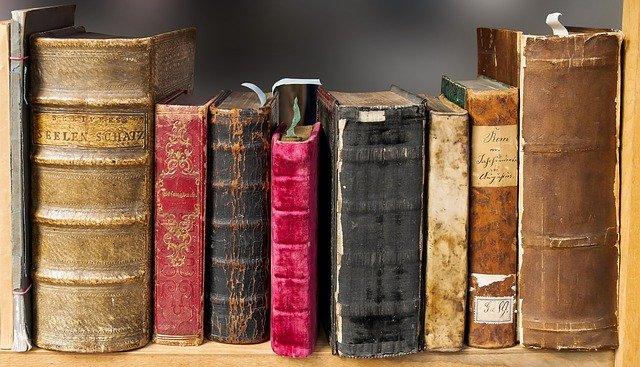 литературный перевод книг