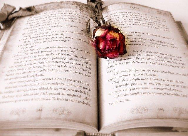 литературный перевод стихов
