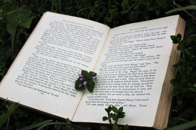 литературный перевод с английского на русский